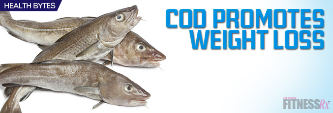 Cod Promotes Weight Loss