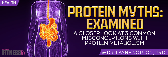 Protein Myths: Examined