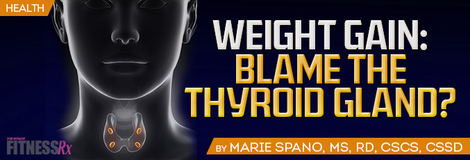 Weight Gain: Blame the Thyroid Gland?
