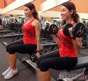 Seated Dumbbell Curl & Concentration Curl