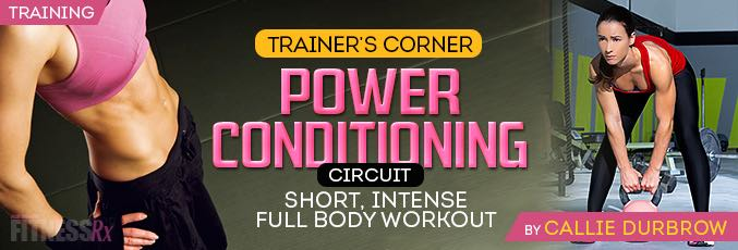 The Power Conditioning Circuit