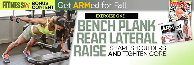 Bench Plank Rear Lateral Raise