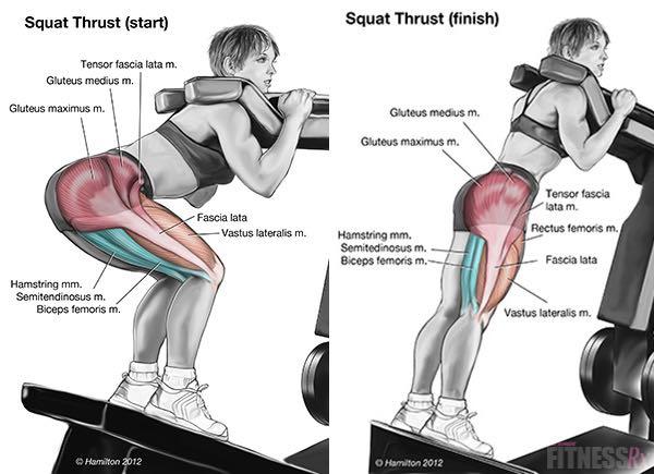 Parallel Squats on Leg Thrust Machine