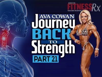 Journey Back To Strength - Fearless
