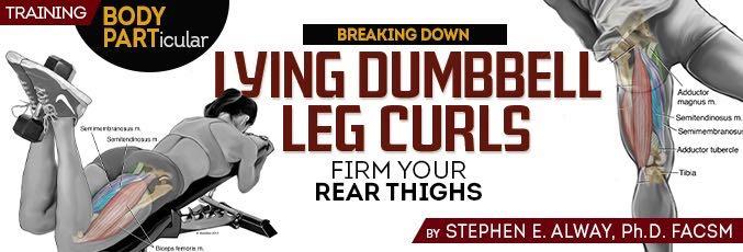 Lying Dumbbell Leg Curls