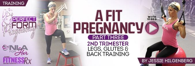 A Fit Pregnancy 3