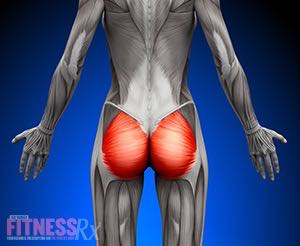 6 Glute Training Myths - Get The Facts For Better Results