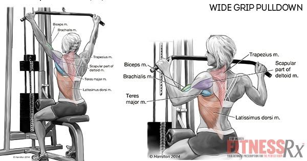 Wide-grip PulldownWide Grip Pull Downs
