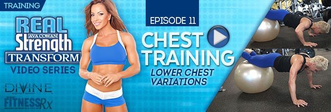 Transform 11: Chest Training