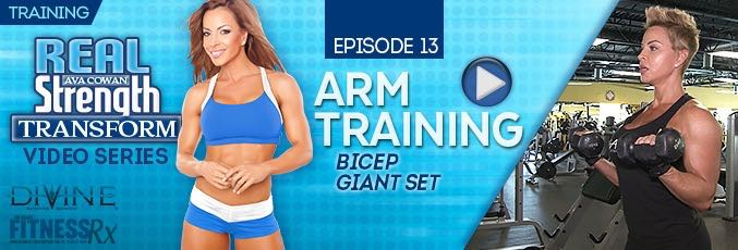 Transform 13: Arm Training