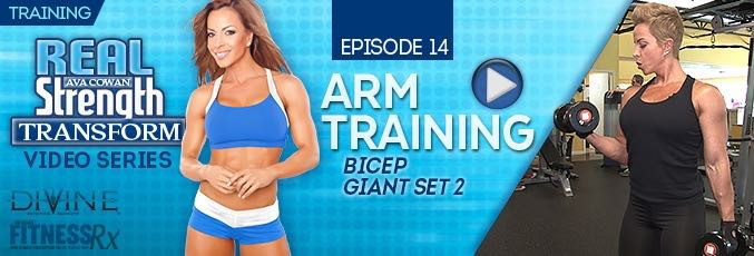 Transform 14: Arm Training