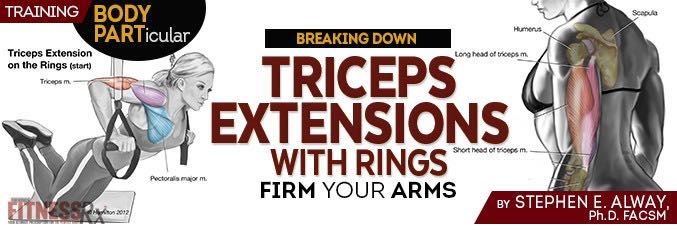 Triceps Extensions with Rings