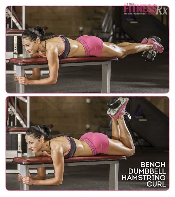 BENCH DUMBBELL HAMSTRING CURL