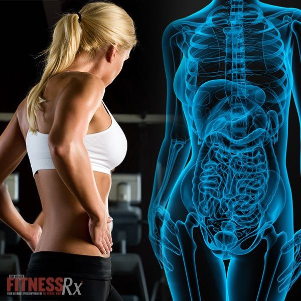 Are Hormones Preventing Your Fat Loss? - Nutrition Tips To Help Correct Imbalances