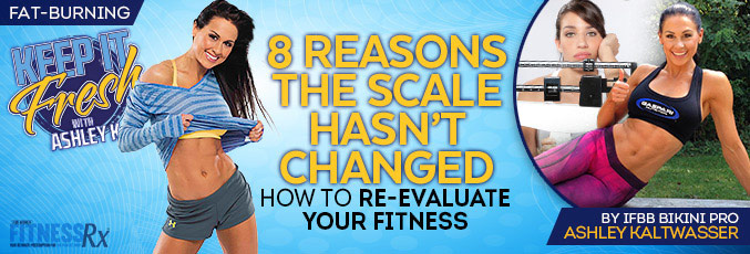 8 Reasons The Scale Hasn't Changed