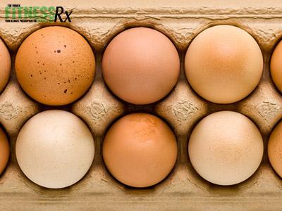6 Ways To Eat Eggs