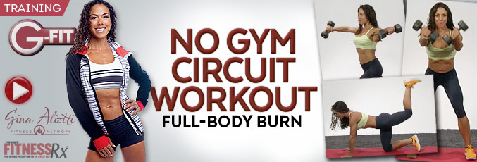 No Gym Circuit Workout