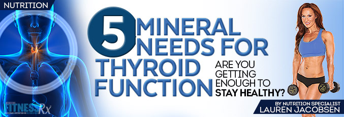 5 Mineral Needs for Thyroid Function