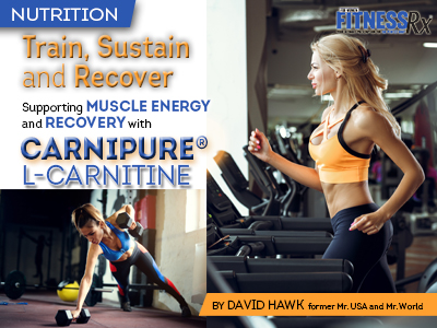 TRAIN, SUSTAIN & RECOVER - Support Muscle Energy and Recovery With Carnipure® L-Carnitine