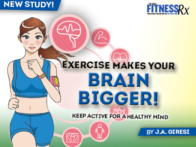 Exercise Makes Your Brain Bigger - Keep Active for a Healthy Mind