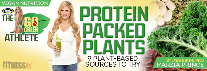 Protein Packed Plants