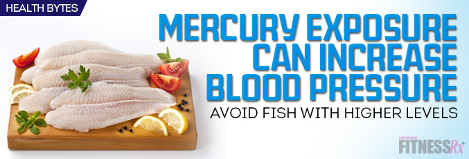 High Mercury Exposure from Fish Increases Blood Pressure