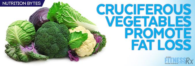Cruciferous Vegetables Promote Fat Loss