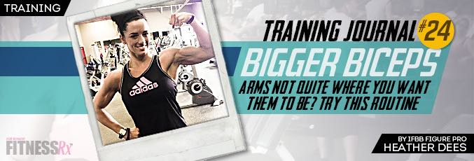 Training Big Biceps