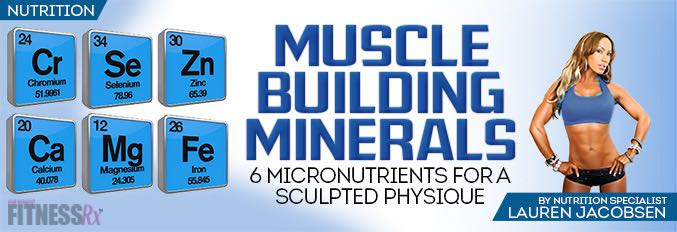 Muscle Building Minerals