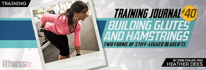 Building Glutes and Hamstrings