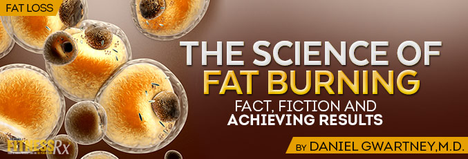 The Science of Fat Burning