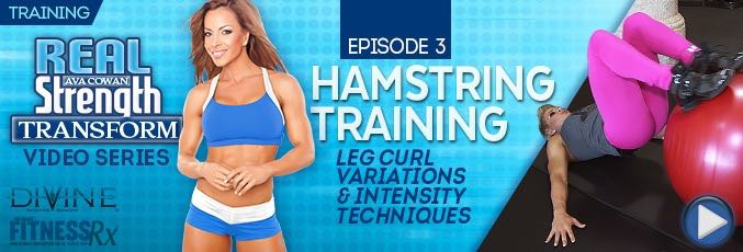 Transform 3: Hamstrings Training