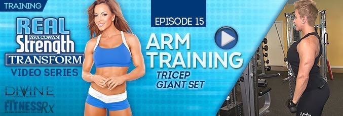 Transform 15: Arm Training