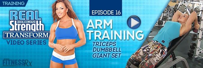 Transform 16: Arm Training