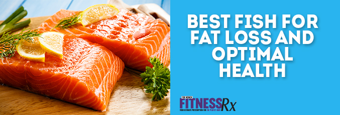 Best Fish for Fat Loss and Optimal Health