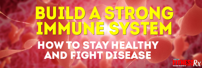 Building a Strong Immune System