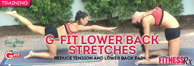 G-Fit-Lower-Back-Stretches