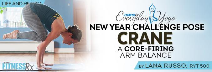 New Year Challenge Pose: Crane