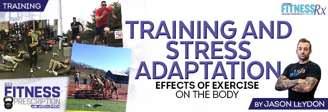 Training And Stress Adaptation