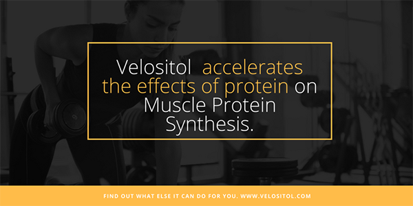 Velositol Accelerates Muscle Protein Synthesis